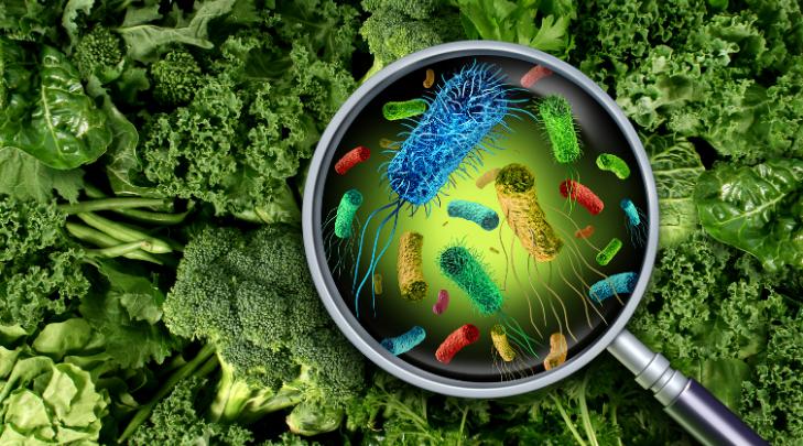dobre bakterie